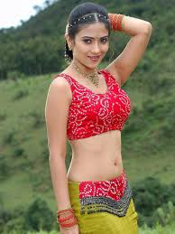 sharma spicy gallery