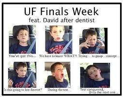 Uf Memes - uf honors program on twitter we love this finals meme submitted