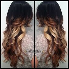 hair color dark on top light on bottom my friend mary has the same blonde on the bottom its like black