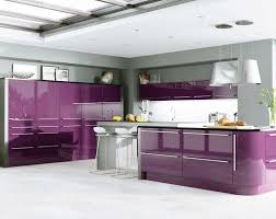 kitchen astonishing stunning purple kitchen design images about