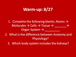 What Is Anatomy And Physiology Class Welcome Back To Mrs M U0027s Anatomy U0026 Physiology Class Ppt Download