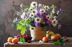 flowers and fruits daisies flowers and fruits flowers nature background