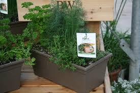 Window Box For Herbs Straightway Design