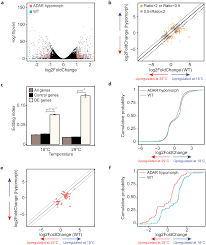 dynamic hyper editing underlies temperature adaptation in drosophila