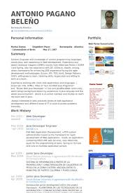 Resume Format For Web Designer Web Developer Resume Samples Visualcv Resume Samples Database