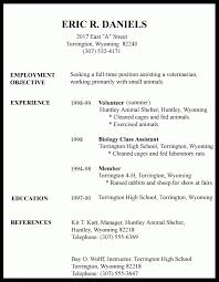 resume samples first time teacher resume sample 6 first time job