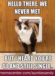 Funny Cat Lady Memes - cat lady funny similar galleries funny fat cat memes funny