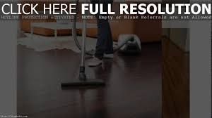 how to clean old hardwood floors remove pet urine odor from hardwood floors titandish decoration