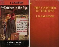 catcher in the rye theme of alienation j d salinger the catcher in the rye riannlitlang