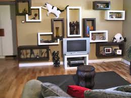 modern cat furniture by sherpa shelves youtube