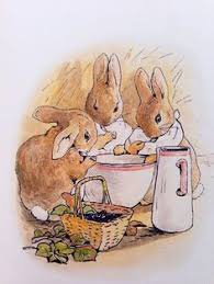 instant download 24 peter rabbit images tale peter