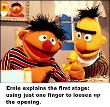 Bert And Ernie Meme - pol politically incorrect thread 116584978