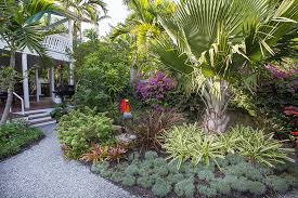 tropical landscape design small garden pocket garden landscape