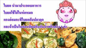 cuisine okay สม นไพรพ นบ าน ยอแก อาการคล นไส อาเจ ยน และช วยข บลมในลำไส ใช ข บ