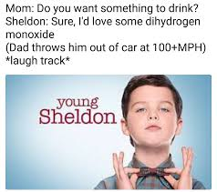 Young Mom Meme - ready for young sheldon to crash and burn album on imgur