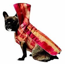 Large Dog Halloween Costume Ideas 26 Dog Halloween Costumes Images Dog Halloween