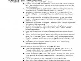 100 it field resume it field resume free resume example and