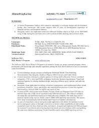 Resume Template With Skills Section Example Of Technical Skills On Resume Resume Engineering Skills