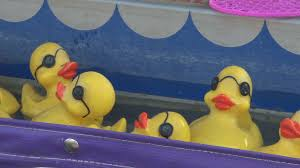 rubber ducks floating in carnival game stock video footage