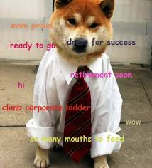 Top Doge Memes - got a job doge know your meme