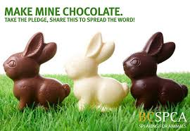 bunnies for easter better to give chocolates bunnies at easter the boundary sentinel