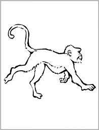 spider monkey coloring pages elegant find this pin and more on