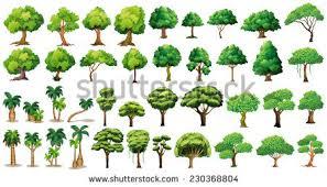 diversity trees set on white stock vector 230368804