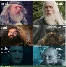 Dad And Son Meme - lord of the rings and harry potter dad son meme lord of the rings