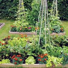 279 best love square foot gardening images on pinterest