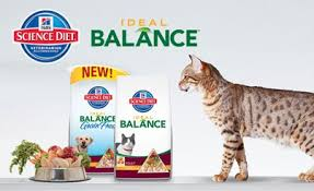 review hill u0027s science diet ideal balance grain free dog food