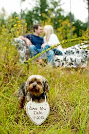Save The Date Signs Save The Date Photos With Dogs Daily Dog Tagdaily Dog Tag