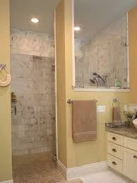 Small Shower Ideas by Signature Hinge With Return Panel