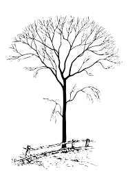 coloring pages printable pictures of leaves printable pictures