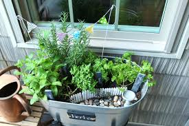 Fairy Garden Party Ideas by Miniature Garden Party Of Herbs Less Than Perfect Life Of Bliss