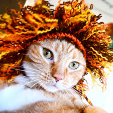 Halloween Costumes Etsy Lion Costume Cats Mane Hand Knit Cat Hat Cat