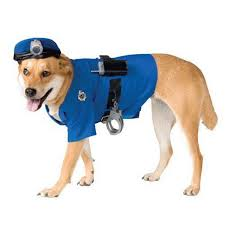 Dogs Halloween Costume Selling Halloween Costumes Dogs 2016 Absolutely Needed