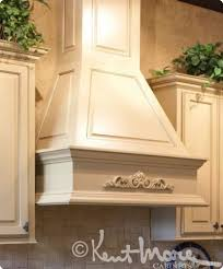Kitchen Hood Designs 25 Best Custom Range Hood Ideas On Pinterest Diy Hood Range