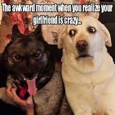 Dog Girlfriend Meme - the awkward moment when you realize your girlfriend is crazy