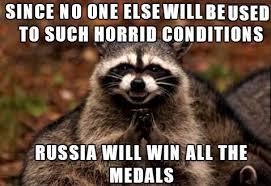 Sochi Meme - olympic games