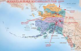 where are the northern lights located alaska polar bear northern lights tour wild alaska travel