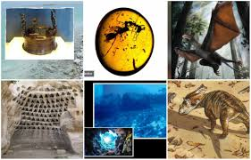 earth 2016 20 amazing discoveries earth
