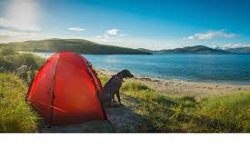pet friendly holidays hotels u0026 cottages visitscotland