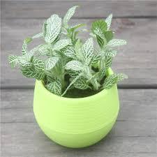 plastic flower pots cheap sheilahight decorations
