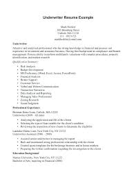 insurance resume exles insurance resume exles