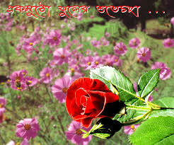 bengalnet best wishes greetings