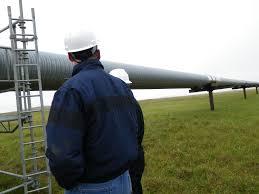 state pipeline coordinator services dog
