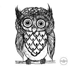 25 best owl images on pinterest owl sketch owl tattoos and owls