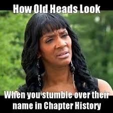 Greek Life Memes - 44 best greek humor images on pinterest alpha kappa alpha