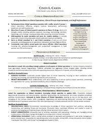 resume samples program u0026 finance manager fp u0026a devops sample