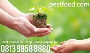 Obat Rayap obat anti rayap bubuk dust wa 0813 9858 8880